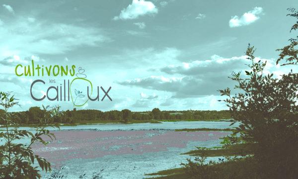 La Loire des Cailloux