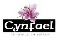 logocynfael1